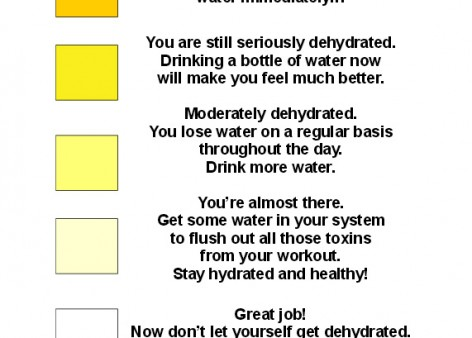 Hydration Chart | SafetyMoment