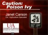poison-ivy-T